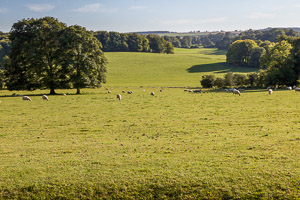 Hampshire countryside from Hinton Ampner by Firgrove Photographic