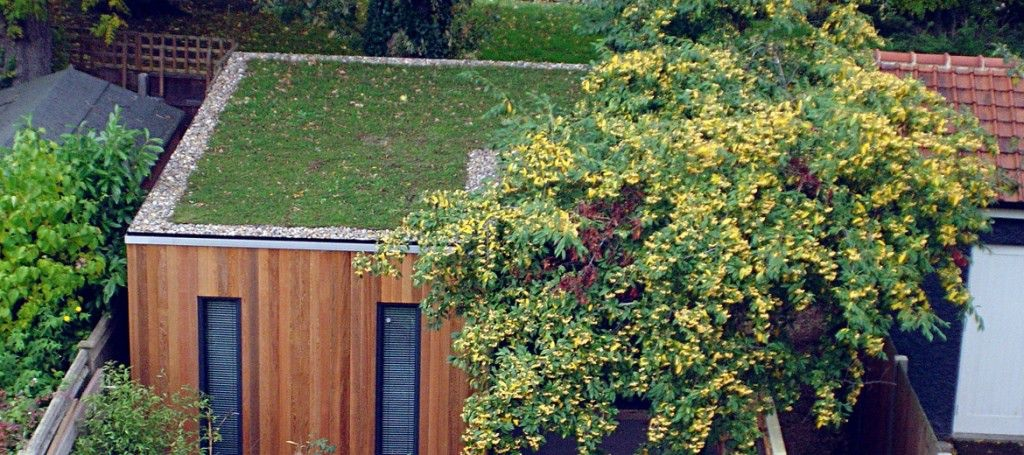 Hobby room with green roof, Green Studios