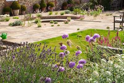 Annual flowers add instant colour and attract butterflies to the garden