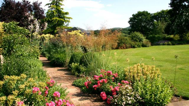 south downs garden