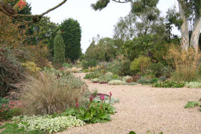 Beth Chatto Garden gravel drought tolerant planting