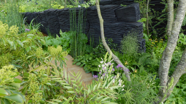 Green planting with the backdrop of burnt timber, simple, bold and very effective.