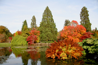 sheffield park lake foliage colour